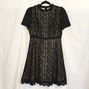BB Dakota Adelina Black Lace Dress